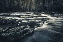 Svartvit flödande flod Royaltyfria Foton