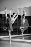 Svartvit fors av den härliga dansareballerina royaltyfri bild
