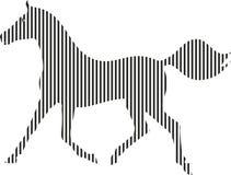 Svartvit häst Royaltyfria Bilder