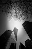Svartvit Hong Kong modern arkitektur Arkivbild