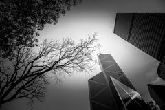 Svartvit Hong Kong modern arkitektur Fotografering för Bildbyråer