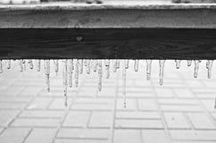 Svartvit istapp på en träbänk efter ett djupfryst regn Arkivfoton