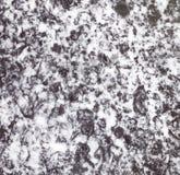 Svartvit marmortextur i badrum Royaltyfri Bild