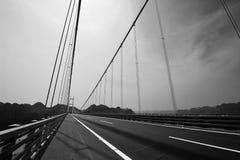 Svartvit planskild korsningbro Royaltyfri Bild