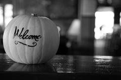 Svartvit rå halloween för squashinredesign bakgrund Arkivfoto