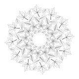Svartvit rund höstmandala för vektor med sidor av lönn, eken, bokträdet, hästkastanjen och alen royaltyfri illustrationer