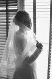 Svartvit stående av den eleganta bruden som poserar mot fönster arkivbilder