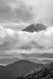 Svartvit stående av den Mount Fuji toppmötet royaltyfri fotografi