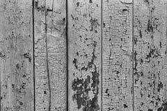 Svartvit träplankabakgrund med gammal brun målarfärg royaltyfri foto