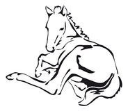 Svartvit vektor av en häst Royaltyfria Bilder