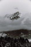 Svartvita berg i vinter Royaltyfria Bilder