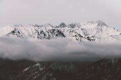 Svartvita berg i vinter Fotografering för Bildbyråer