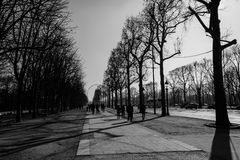 Svartvita Champs-Elysees Arkivfoto