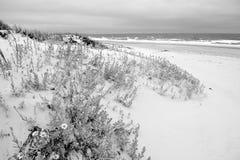 Svartvita dyn i en ensam strand Arkivbild