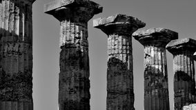 Svartvita grekiska pelare och kolonner Fotografering för Bildbyråer