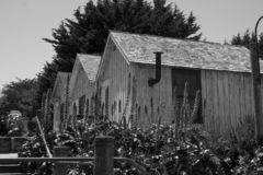 Svartvita hus i en rulle royaltyfria foton