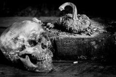 Svartvita mänskliga skallar för stilleben på trä Royaltyfria Foton