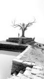 Svartvita Nepal (serier) Arkivfoto