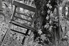 Svartvita stolar Royaltyfri Bild