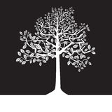 Svartvita trees, silhouette, sommar Arkivfoton