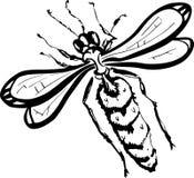 (Svartvita) Wasp, Royaltyfri Fotografi
