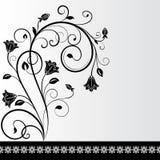 Svartvitt blommakort Royaltyfri Bild