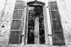 Svartvitt fönster Arkivbilder