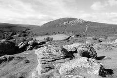 Svartvitt foto av den Dartmoor nationalparken, Devon, UK royaltyfria foton