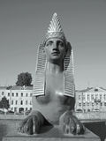 Svartvitt fotografi av sfinxen i St Petersburg Royaltyfri Fotografi