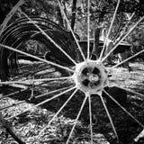 Svartvitt hjul Royaltyfri Fotografi