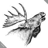 Svartvitt inrista den isolerade illustrationen för vektorn för älghandattraktion Royaltyfria Bilder