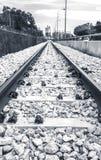 Svartvitt järnväg leda till bransch Arkivbilder