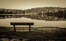 Svartvitt Lakeshore Royaltyfri Foto