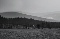 Svartvitt landskap Arkivbild