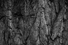 Svartvitt skäll för abstrakt grunge Arkivbild