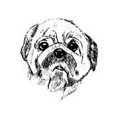 Svartvitt skissa av en hund royaltyfri illustrationer