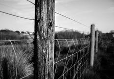 Svartvitt staket på Brithish hedländer Royaltyfria Foton