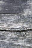 Svartvitt trä med sprickor Arkivbild