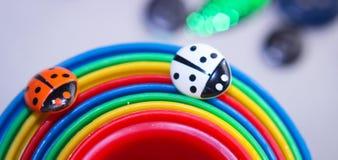 sveglio dolce di colore dell'arcobaleno della coccinella Fotografie Stock