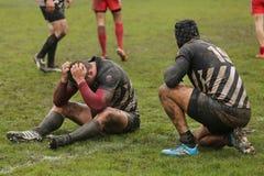 Svek rugbyspelare royaltyfria bilder