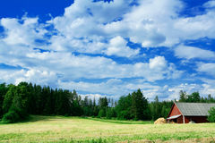 svensk för landslandskapsida arkivbilder