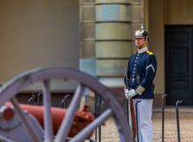 Svensk krigsmakt kommenderar i likformig på utvändig th för vaktstolpen Arkivbild