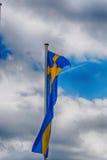 Svensk landsflagga Fotografering för Bildbyråer