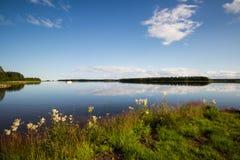 Svensk sjö på en härlig sommardag Arkivbild