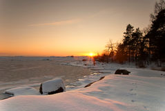 svensk wild vinter Royaltyfri Bild