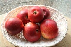 Svenska äpplen - Ingrid Marie Royaltyfri Bild