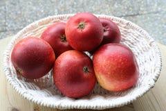 Svenska äpplen - Ingrid Marie Royaltyfri Fotografi
