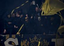 Svenska fans royaltyfri foto