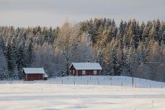 Svenska trähus i snöig sceniskt vinterlandskap Royaltyfria Bilder
