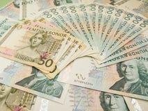 Svenska valutaanmärkningar Arkivbild